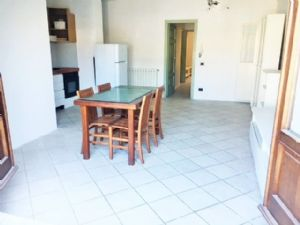 : apartment with garden for sale Lido di Camaiore Lido di Camaiore